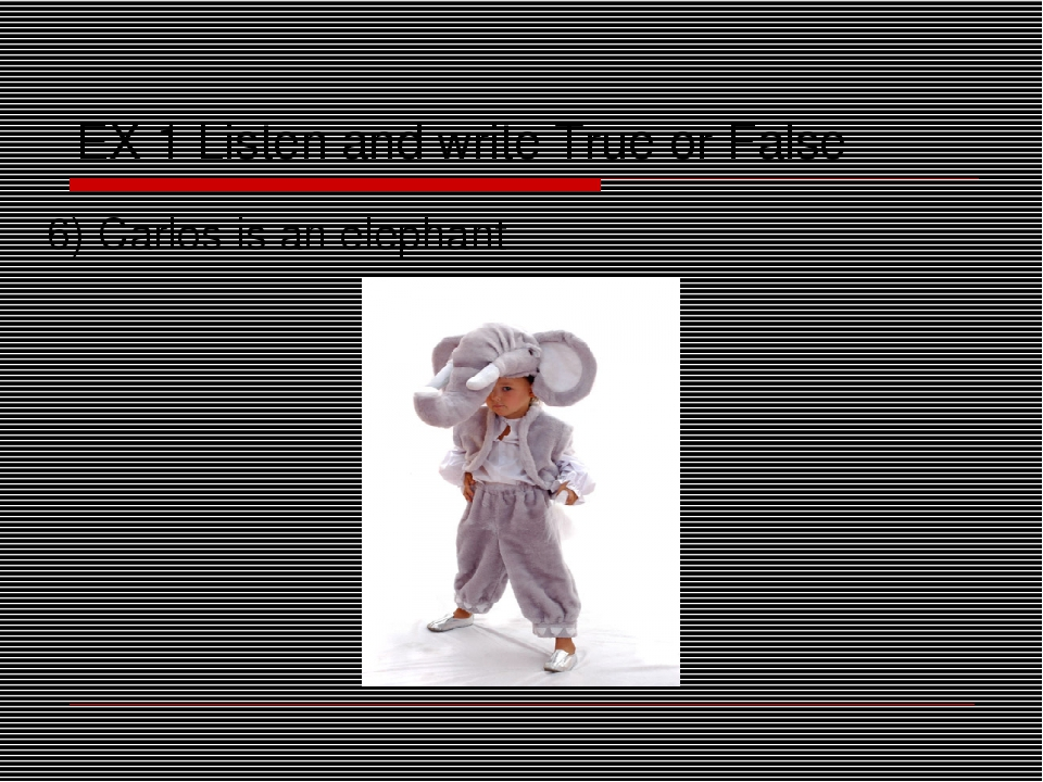 EX 1 Listen and write True or False 6) Carlos is an elephant