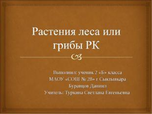 Выполнил: ученик 2 «Б» класса МАОУ «СОШ № 28» г Сыктывкара Буравцов Даниил Уч