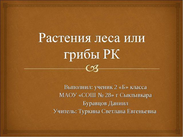 Выполнил: ученик 2 «Б» класса МАОУ «СОШ № 28» г Сыктывкара Буравцов Даниил Уч...