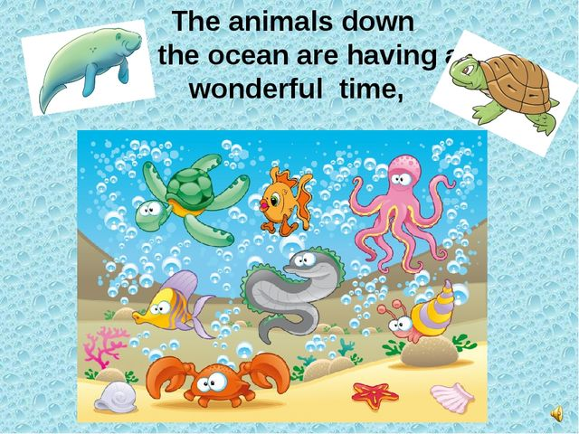 The animals down in the ocean are having a wonderful time,