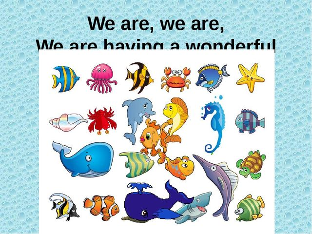 We are, we are, We are having a wonderful day!