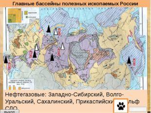 Выход Вопросы по теме «Минеральные ресурсы России» Месторождения - скопления