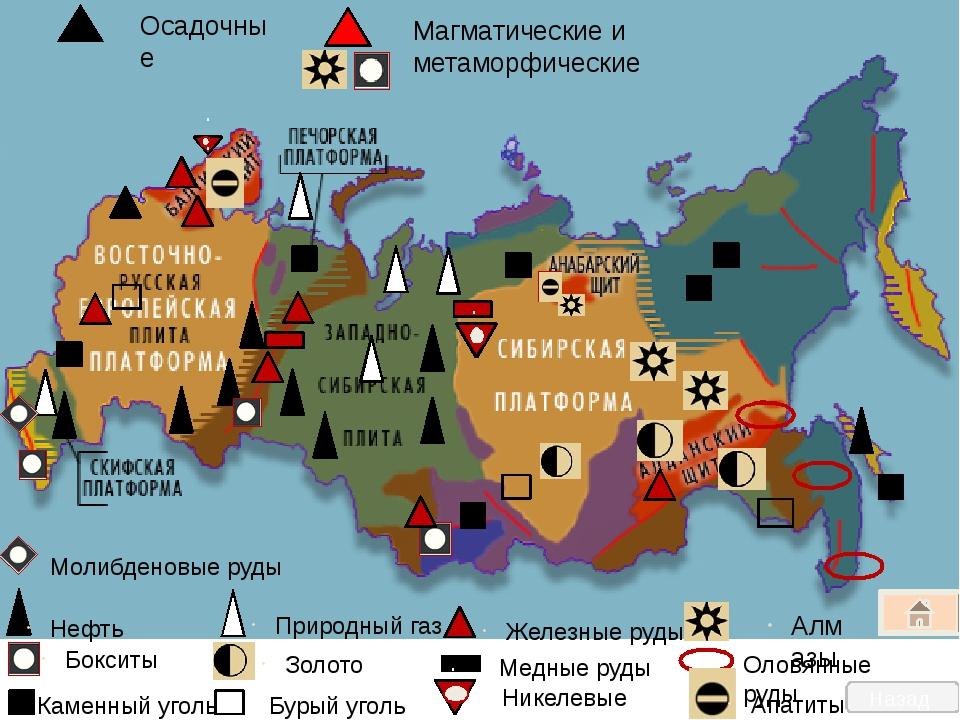 Главные бассейны полезных ископаемых России Нефтегазовые: Западно-Сибирский,...