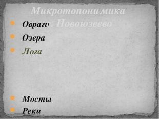 Овраги Озера Лога Мосты Реки Горы Микротопонимика с. Новоюзеево