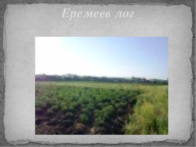 Еремеев лог