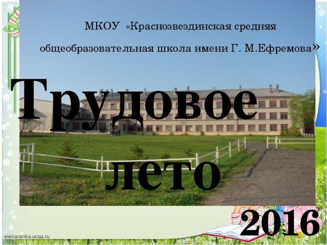 2016 МКОУ «Краснозвездинская средняя общеобразовательная школа имени Г. М.Ефр...