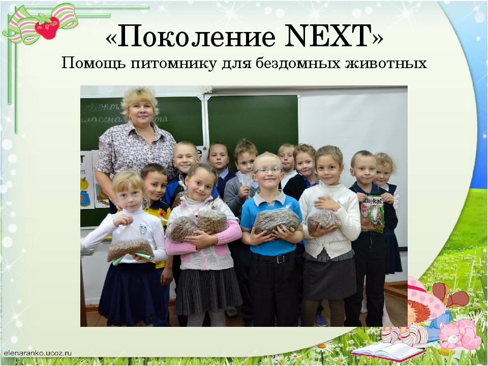 «Поколение NEXT» Помощь питомнику для бездомных животных