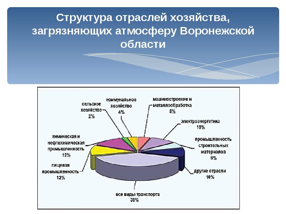 Структура отраслей хозяйства, загрязняющих атмосферу Воронежской области