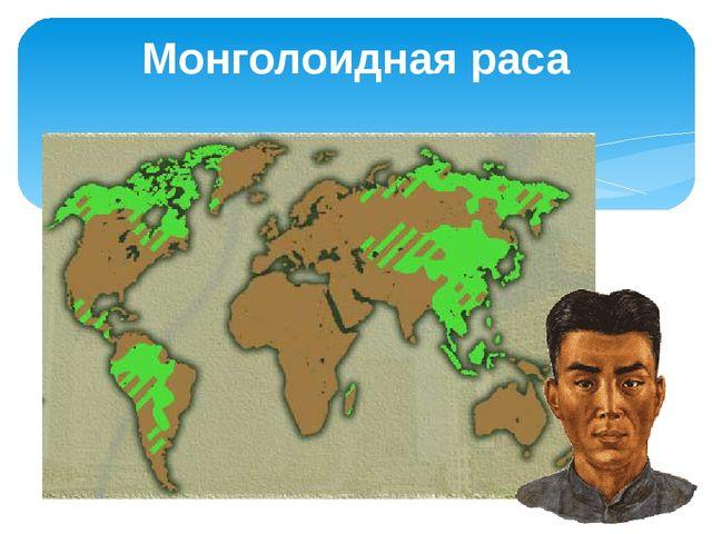 Монголоидная раса