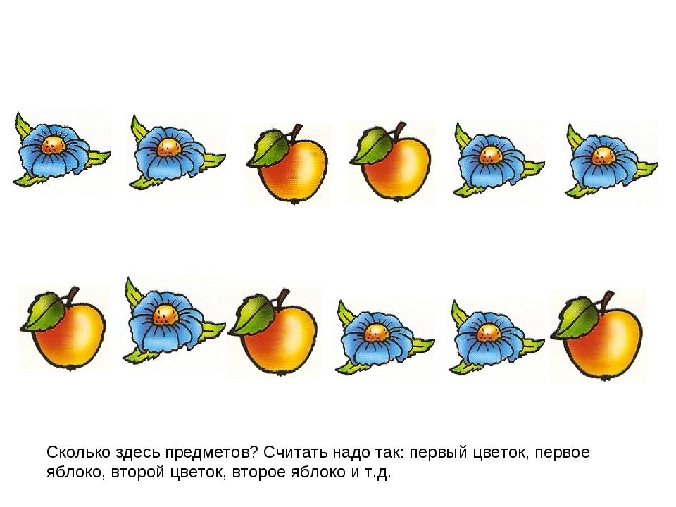 Сколько здесь предметов? Считать надо так: первый цветок, первое яблоко, втор...