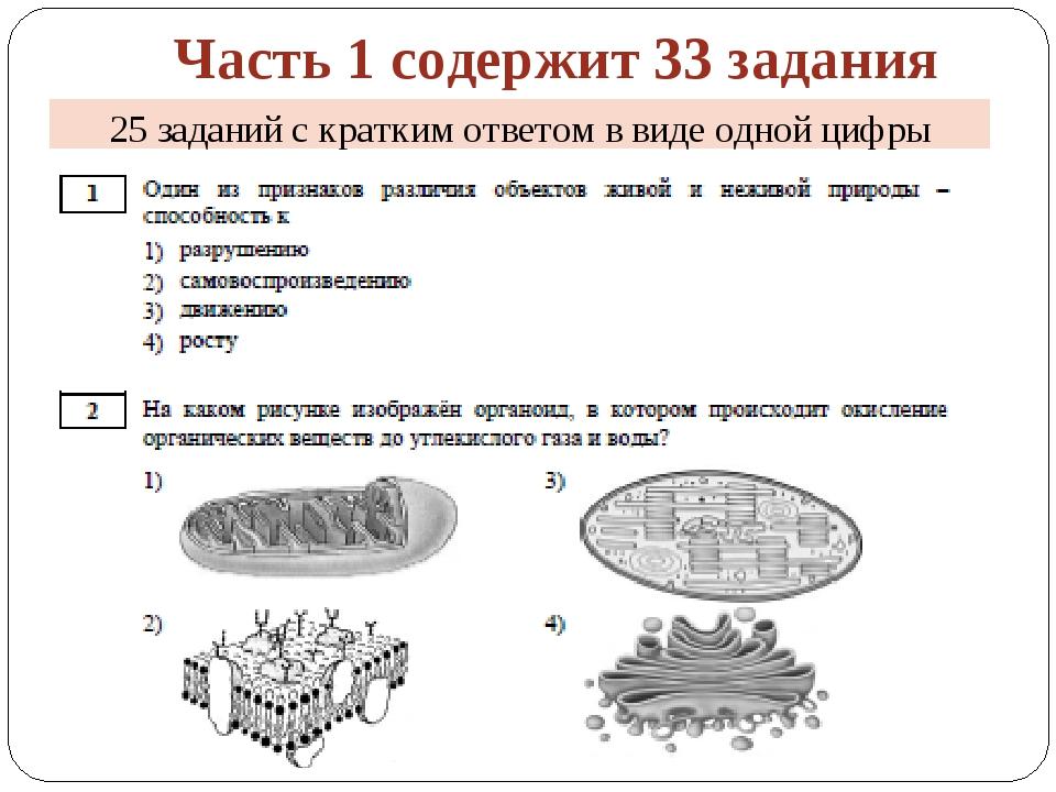 Часть 1 содержит 33 задания 25 заданий с кратким ответом в виде одной цифры