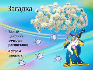 Загадка Белые цветочки вечером расцветают, а утром увядают…