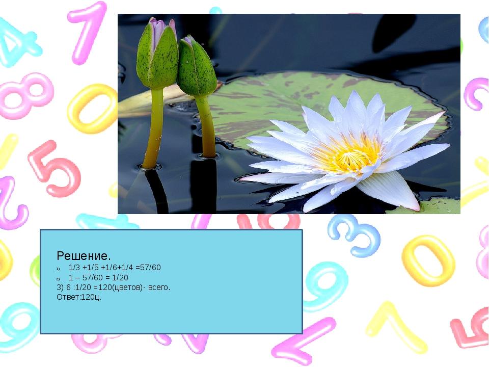 Решение. 1/3 +1/5 +1/6+1/4 =57/60 1 – 57/60 = 1/20 3) 6 :1/20 =120(цветов)-...