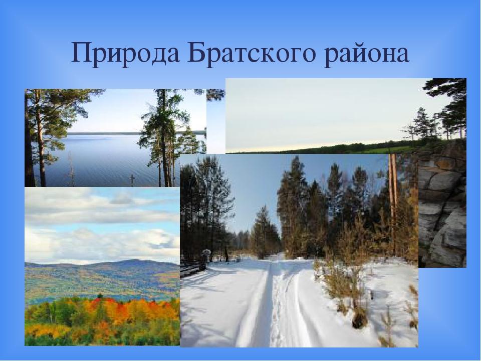 Природа Братского района 