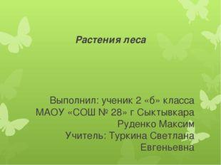Растения леса Выполнил: ученик 2 «б» класса МАОУ «СОШ № 28» г Сыктывкара Руде