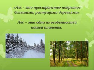 «Лес - это пространство покрытое большими, растущими деревьями» Лес – это одн