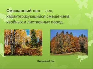 Смешанный лес—лес, характеризующийся смешением хвойных и лиственных пород. С