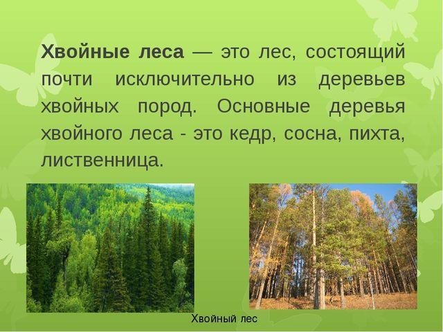 Хвойные леса — это лес, состоящий почти исключительно из деревьев хвойных пор...