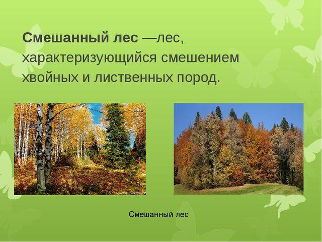 Смешанный лес—лес, характеризующийся смешением хвойных и лиственных пород. С...