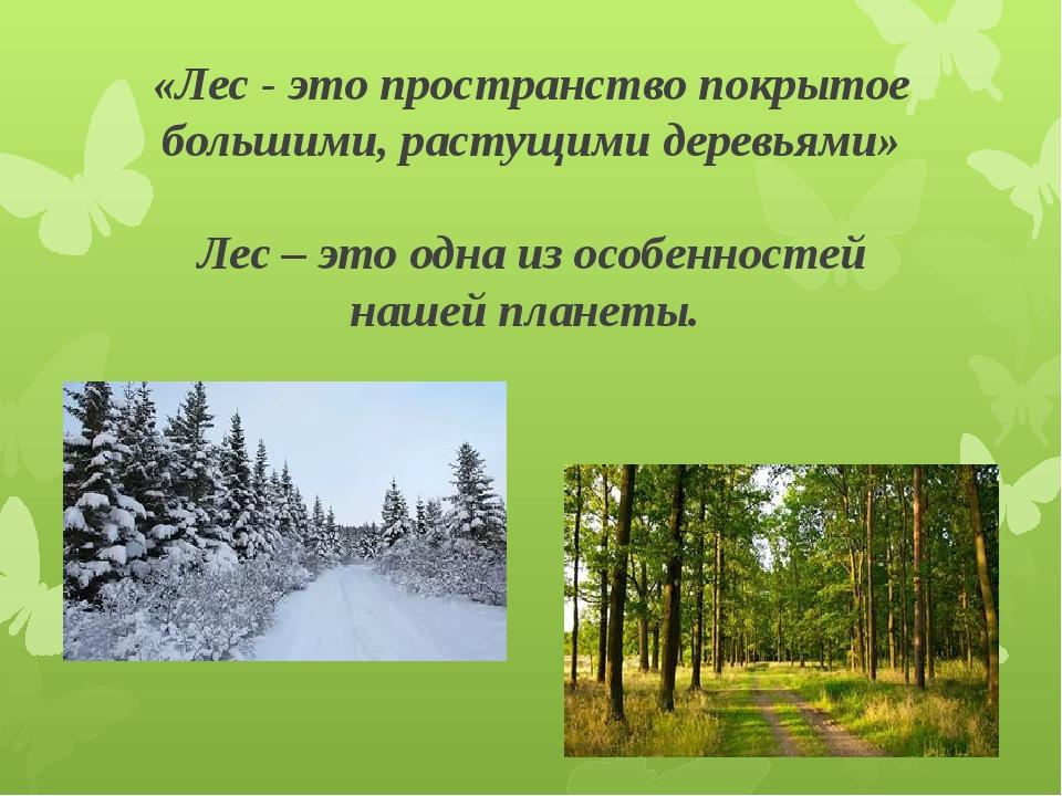 «Лес - это пространство покрытое большими, растущими деревьями» Лес – это одн...