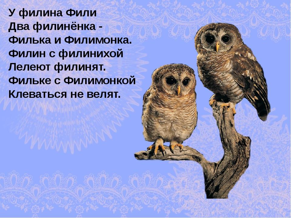 У филина Фили Два филинёнка - Филька и Филимонка. Филин с филинихой Лелеют фи...