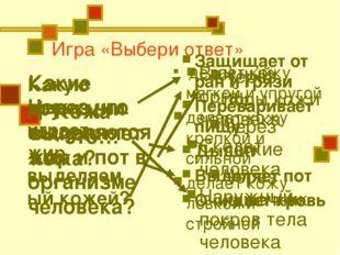 Игра «Выбери ответ» Кожа – это… Какие функции выполняет кожа? Через поры кожи