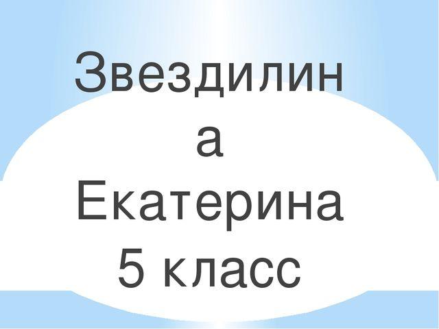Звездилина Екатерина 5 класс