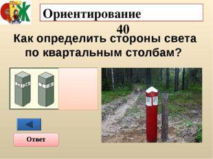 Ориентирование 50 Определите азимут ( дома, дерева, мельницы) Ответ 1200 2250