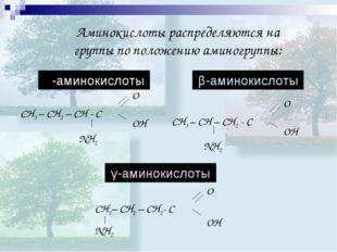Аминокислоты распределяются на группы по положению аминогруппы: γ-аминокислот