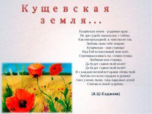 Кущёвская земля – родимые края... Не зря судьба связала нас с тобою, Как м