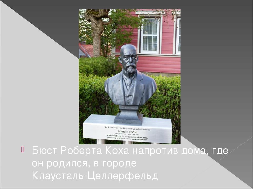 Бюст Роберта Коха напротив дома, где он родился, в городе Клаусталь-Целлерфе...