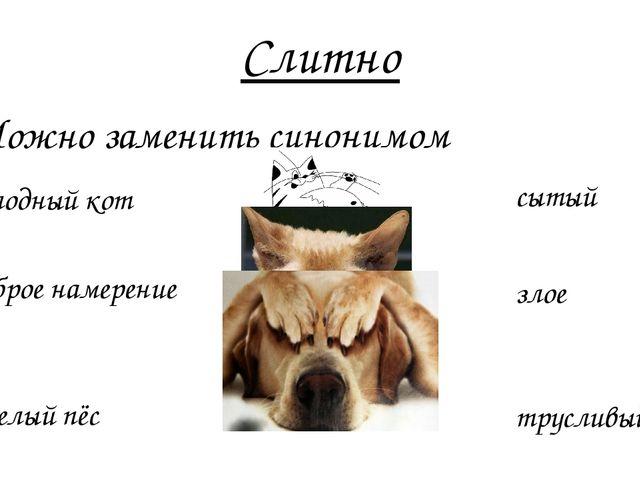 Слитно 2. Можно заменить синонимом сытый Недоброе намерение злое Несмелый пёс...