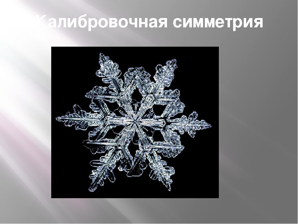 Калибровочная симметрия