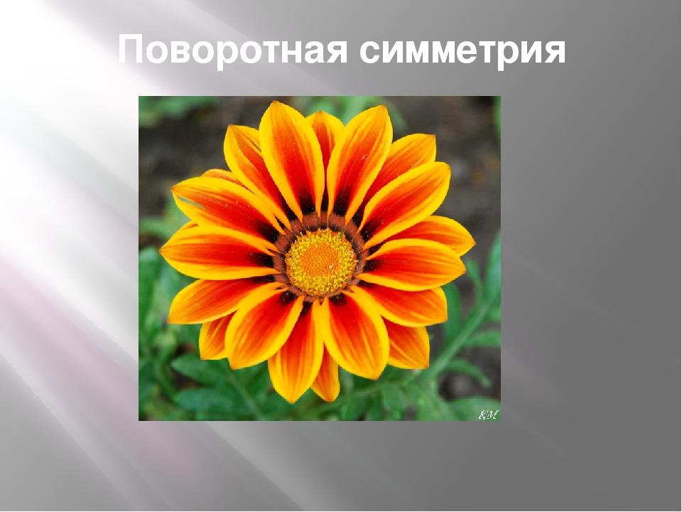 Поворотная симметрия