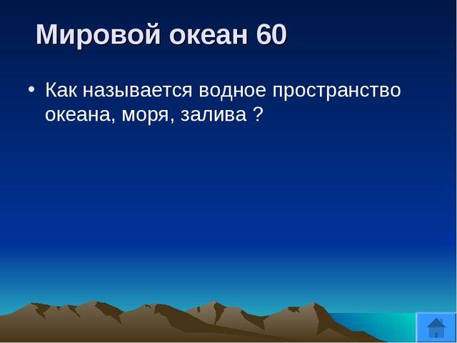 Мировой океан 60 Как называется водное пространство океана, моря, залива ?
