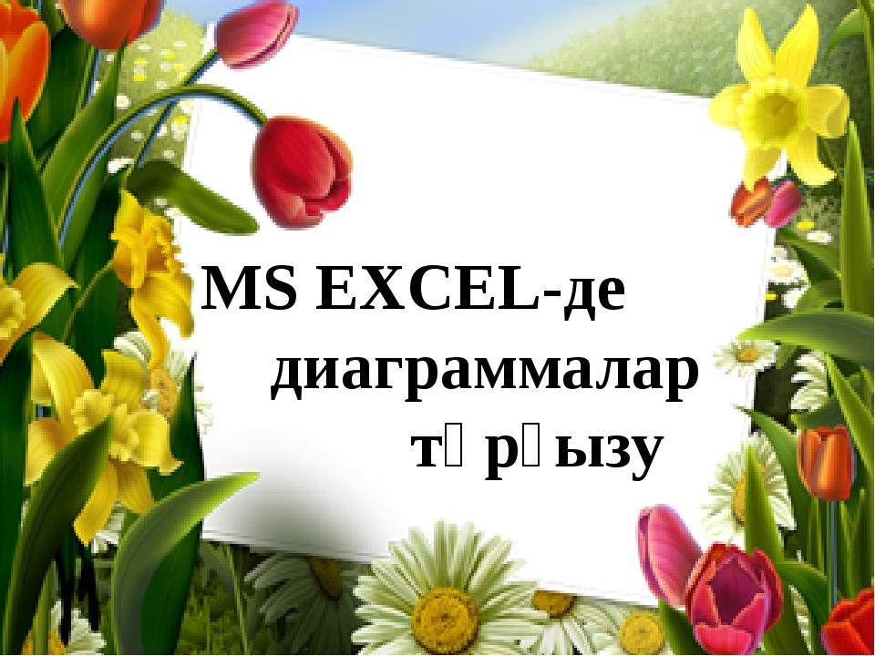 MS EXCEL-де диаграммалар  тұрғызу
