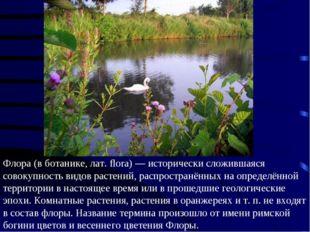 Флора (в ботанике, лат. flora) — исторически сложившаяся совокупность видов р