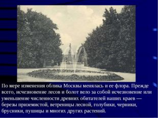 По мере изменения облика Москвы менялась и ее флора. Прежде всего, исчезновен