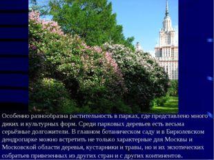 Особенно разнообразна растительность в парках, где представлено много диких и
