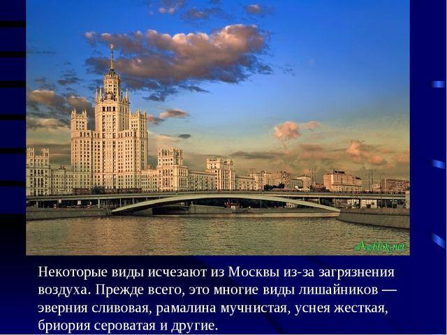 Некоторые виды исчезают из Москвы из-за загрязнения воздуха. Прежде всего, эт...