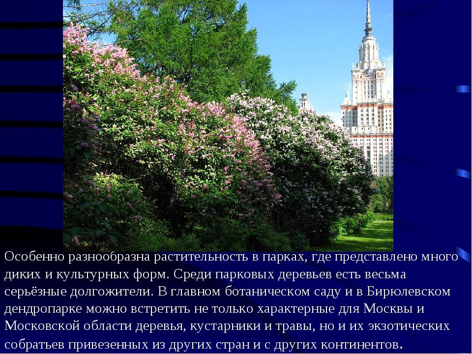 Особенно разнообразна растительность в парках, где представлено много диких и...