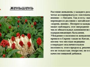 женьшень Растение женьшень у каждого должно четко ассоциироваться с востоком,