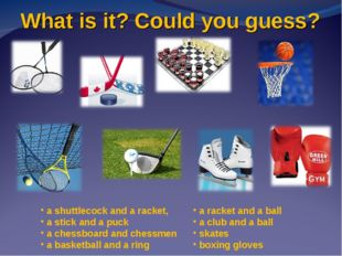 What is it? Could you guess? a shuttlecock and a racket, a stick and a puck a