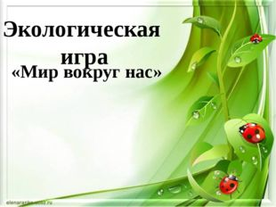 Экологическая игра «Мир вокруг нас»