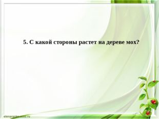 5. С какой стороны растет на дереве мох?