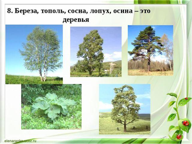8. Береза, тополь, сосна, лопух, осина – это деревья