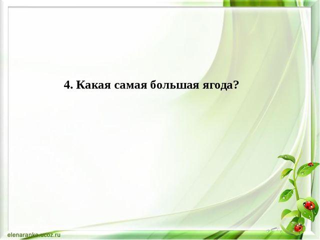 4. Какая самая большая ягода?