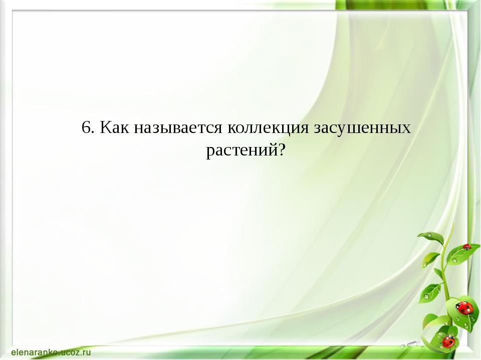 6. Как называется коллекция засушенных растений?