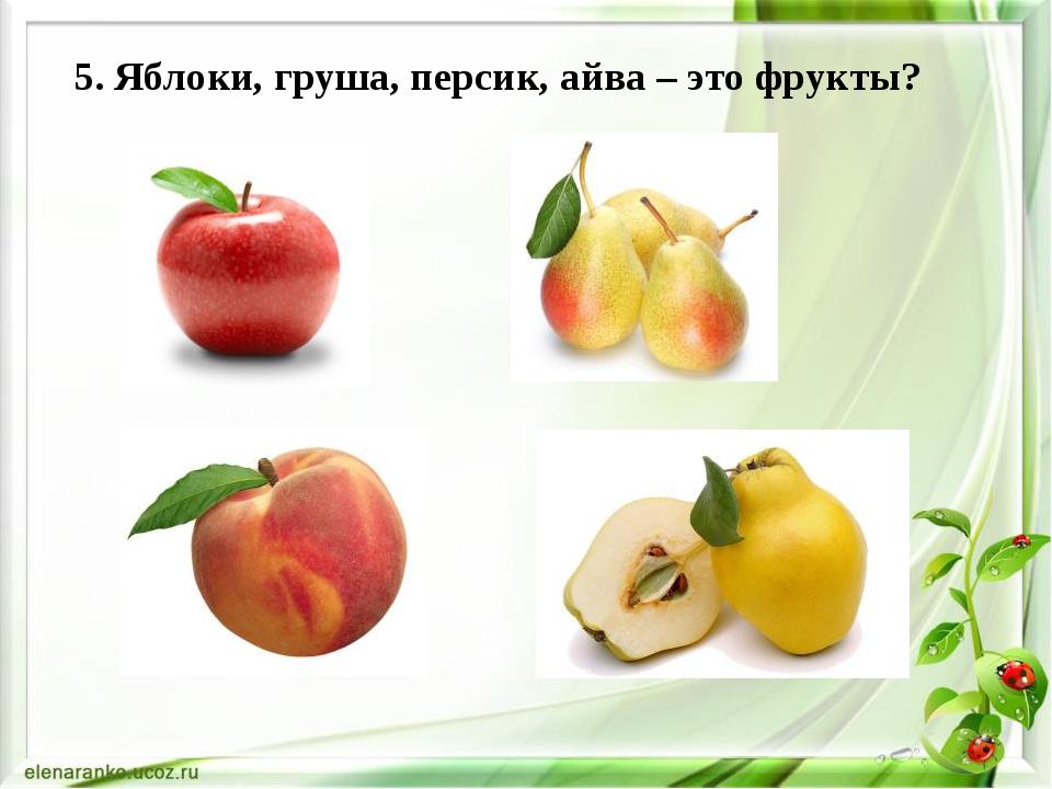 5. Яблоки, груша, персик, айва – это фрукты?