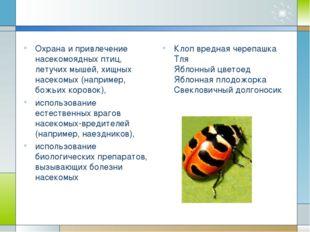 Охрана и привлечение насекомоядных птиц, летучих мышей, хищных насекомых (на
